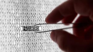 seguridad de la red después de un aumento de los ataques cibernéticos