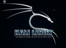 Kali Linux 1.1.0
