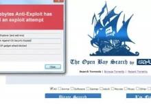 Se reporta un ataque de malware en WordPress producido por un clon de The Pirate Bay