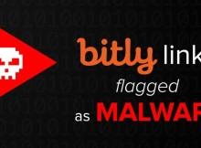 Un imitador de Bit.ly en el primer puesto de distribución de malware