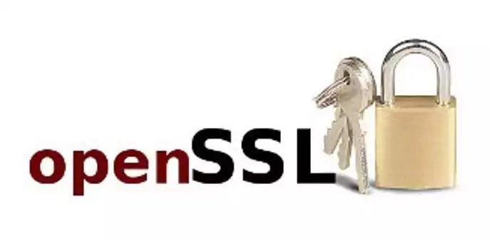 Nuevos boletines de seguridad para las librerías OpenSSL