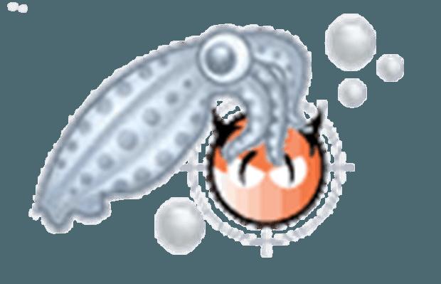 squidclamav-logo