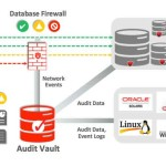 10 vulnerabilidades importantes que afectan a la seguridad de base de datos empresariales