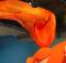 Mozilla-Firefox-Servo