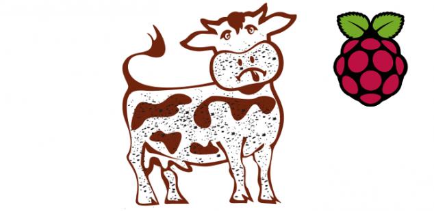 dirty-cow-raspberry-pi