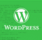 hacked-wordpress-core-file-leveraged-for-hijacking-a-site-s-web-traffic-508959-2